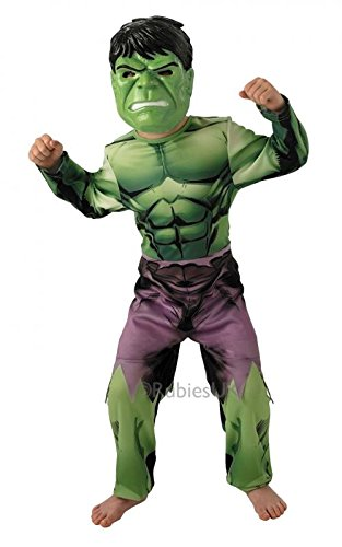Marvel Hulk costume 888911